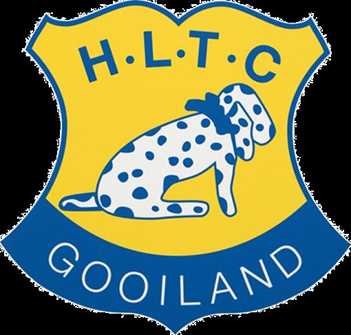Logo HLTC Gooiland transparant.png
